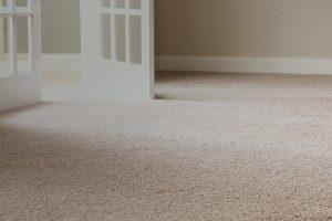 Carpet Installation in Living Room